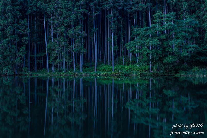 奈良・龍王ヶ淵の水鏡 早朝3