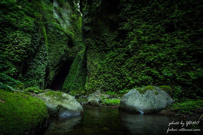 シワガラの滝への道2