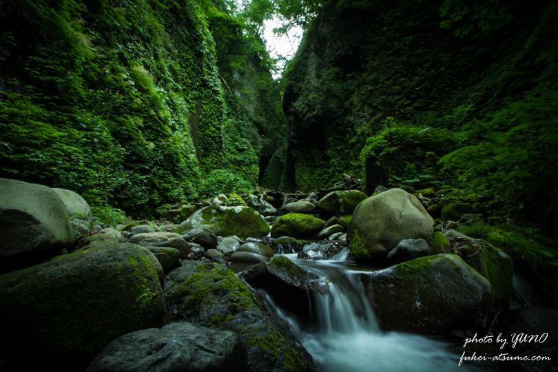 シワガラの滝への道1