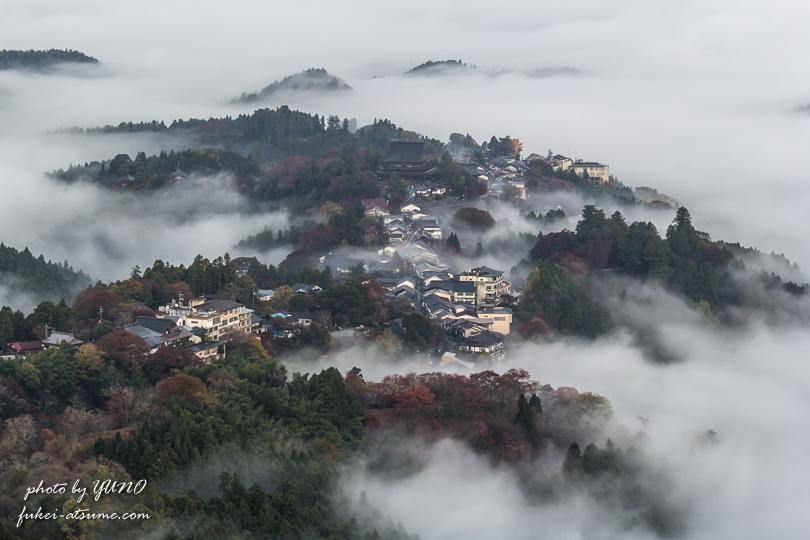 奈良・吉野山・雲海2