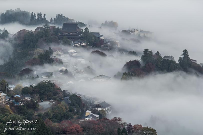 奈良・吉野山・雲海1