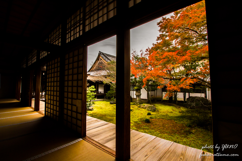 京都・仁和寺・紅葉1