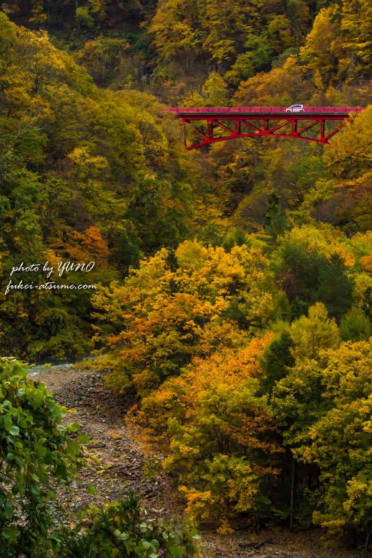 長野・松川渓谷・紅葉1