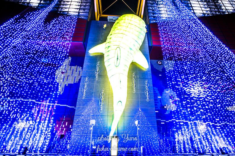 『Golden Shark』J:COM×OSAKAミュージアム イルミネーションフォトコンテスト2017【海遊館賞】