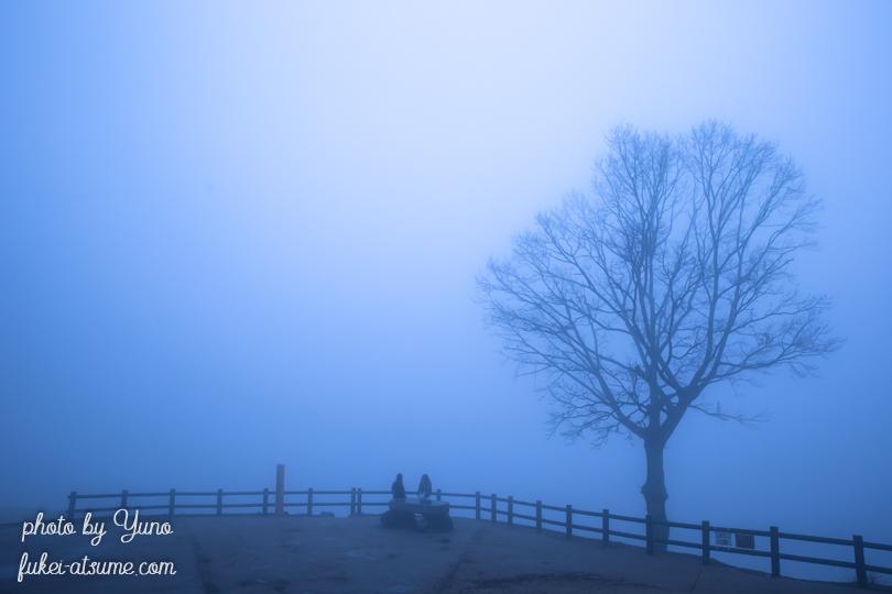奈良・若草山・夜明け前・霧世界・霧の中・濃霧