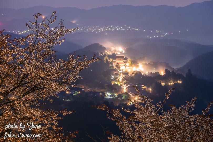 奈良・吉野山・蔵王堂・夜景・霧・山桜