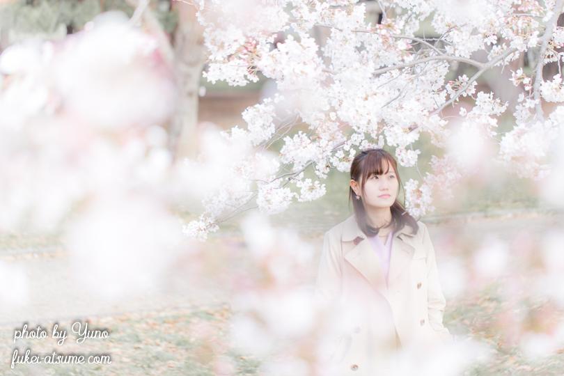 ポートレート撮影・ポトレ・女子・桜・ソメイヨシノ・ぼかし・ぼけ・儚い・淡い・脆い・透明感・10代