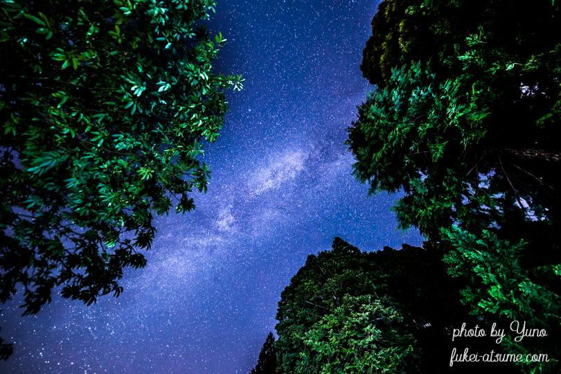 星空・星景写真・天の川・星屑の森・天頂の星空・星景・CANONEOS6D