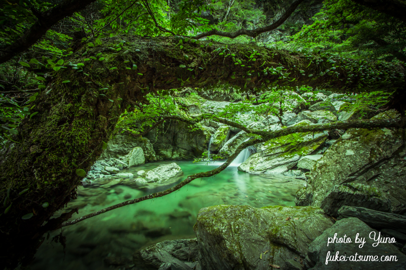 高知・安居渓谷・秘境・青の淵・青緑・エメラルドグリーン・清流