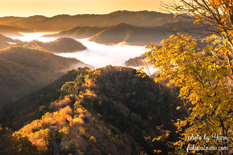滋賀県高島市・おにゅう峠・雲海・紅葉・朝陽・朝焼け・光
