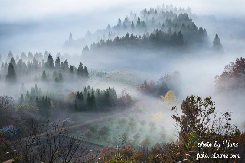 京都府福知山市・宝山公園・夜久野高原・霧・早朝・霧に包まれて