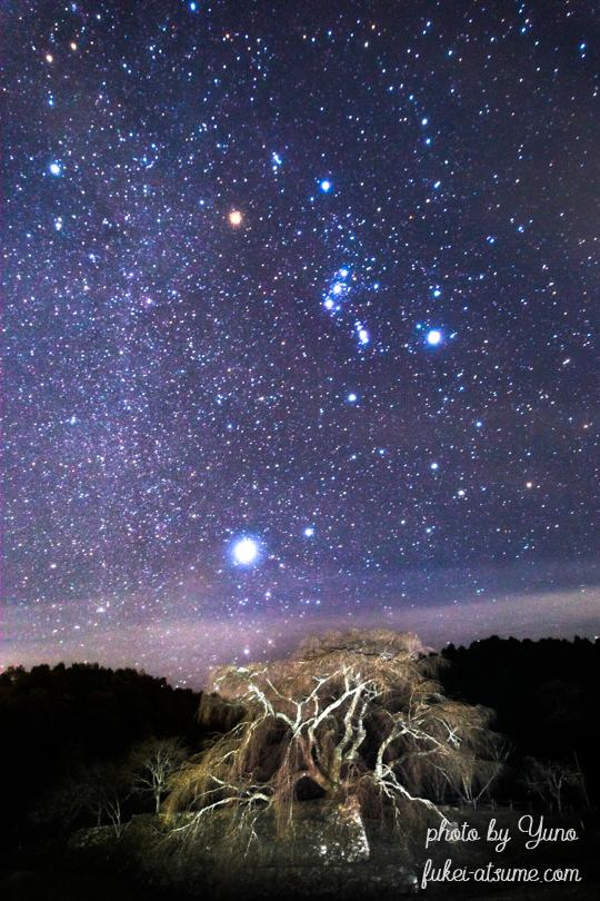 奈良・又兵衛桜・冬の星座・冬の星空・オリオン座・シリウス