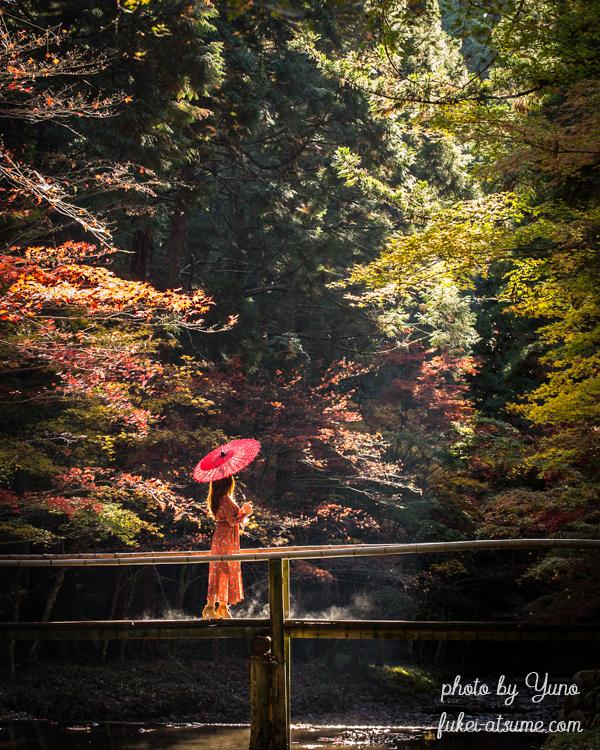 静岡県周智郡森町一宮・小國神社・小さな木の橋・光芒・紅葉・ドラマ・モデル・絶景3