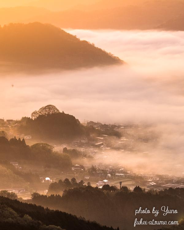 奈良・雲海・朝陽