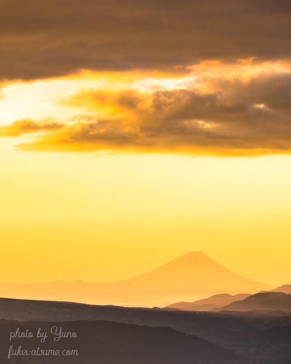 富士山・高ボッチ高原・金色・朝焼け・黄金富士